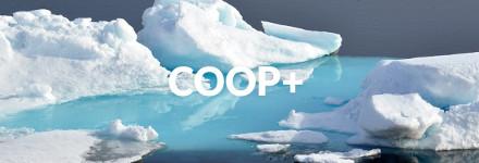 coop-plus-head